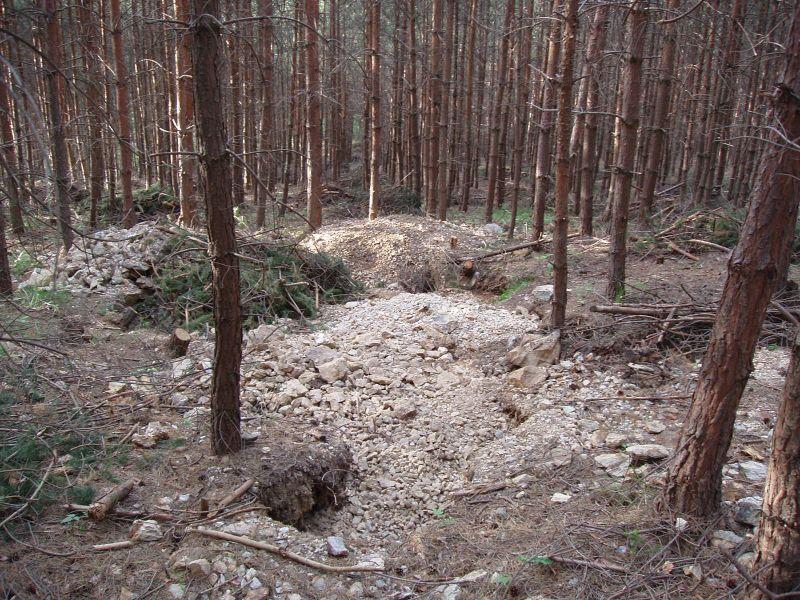 Dolní Bory, Česká republika