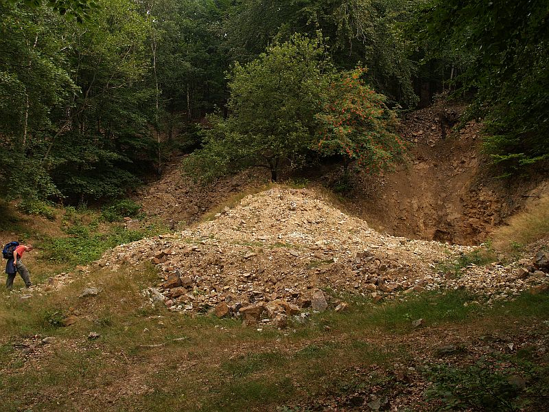 Krupka, křemenný peň, Česká republika