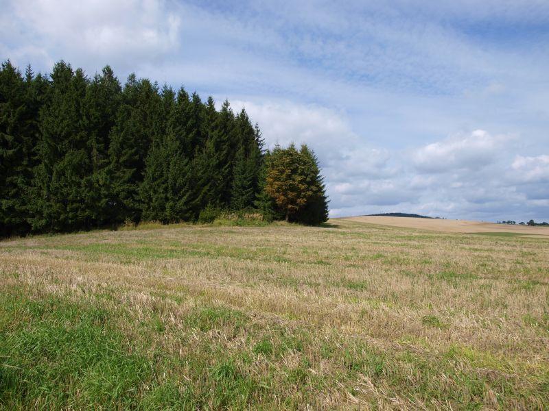 Řečice, Česká republika