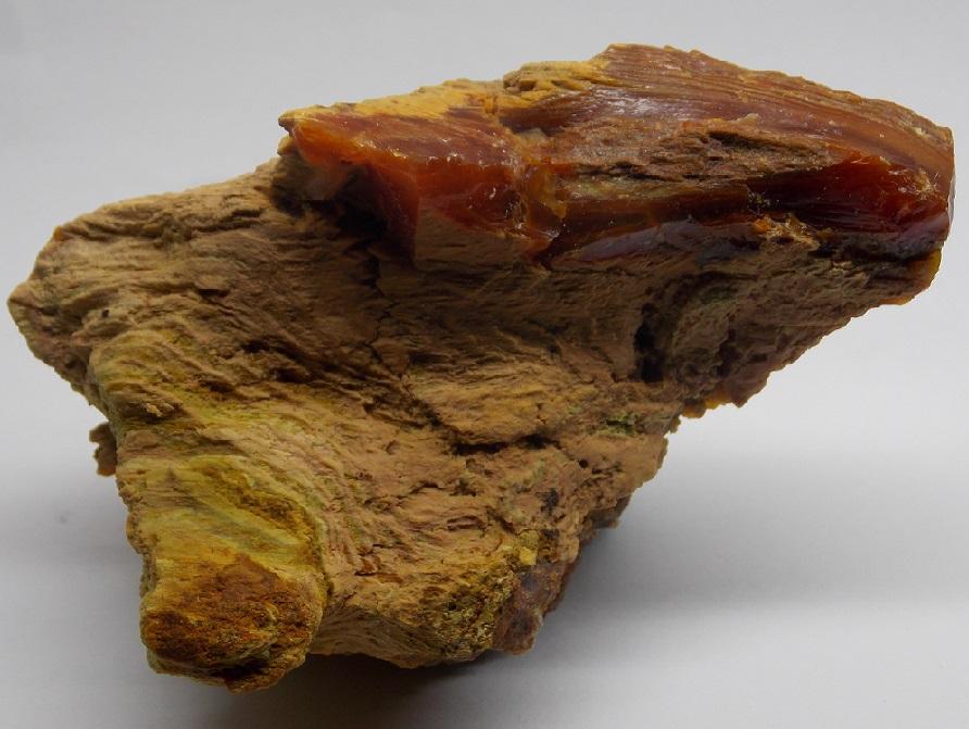 Opál (var. Opalizované Dřevo)