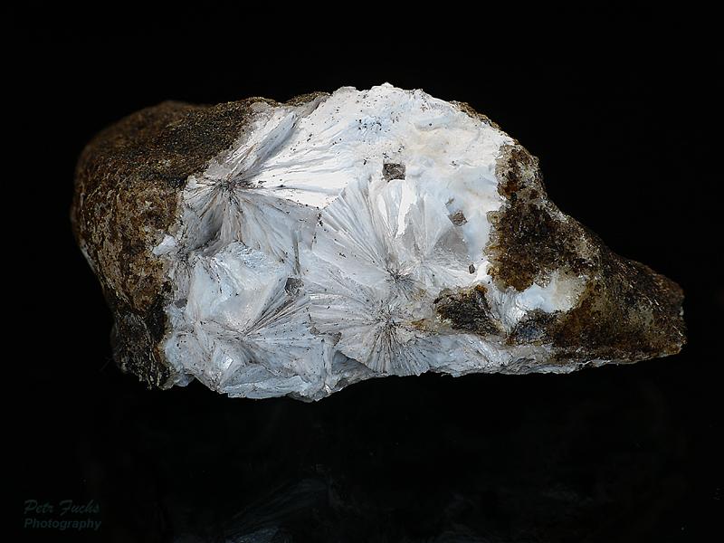 Zeofylit